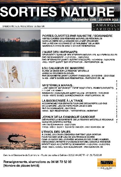 Sorties Nature Décembre 2019 - Janvier 2020 - RNR Scamandre